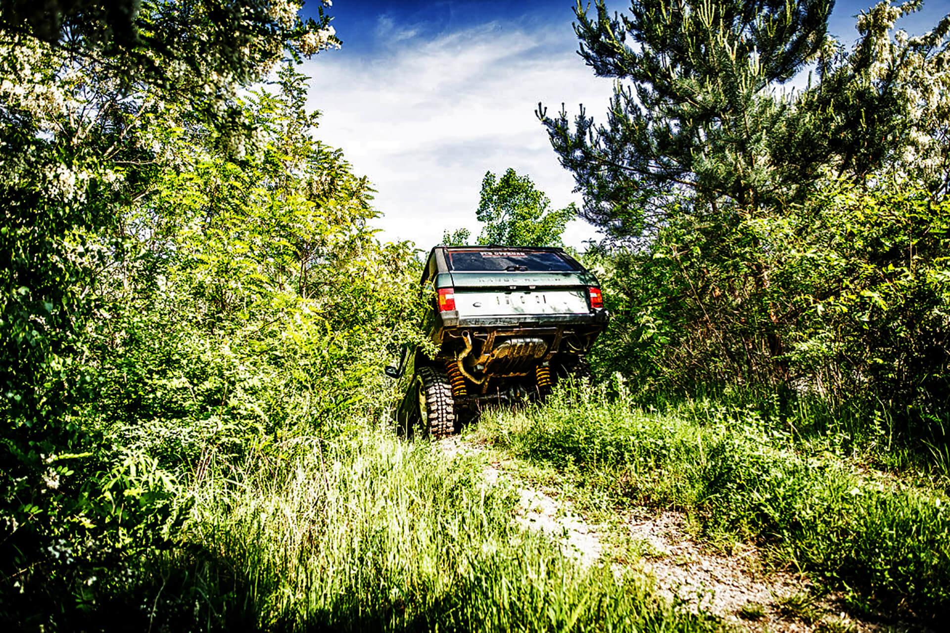Geländewagen auf einer Wiese